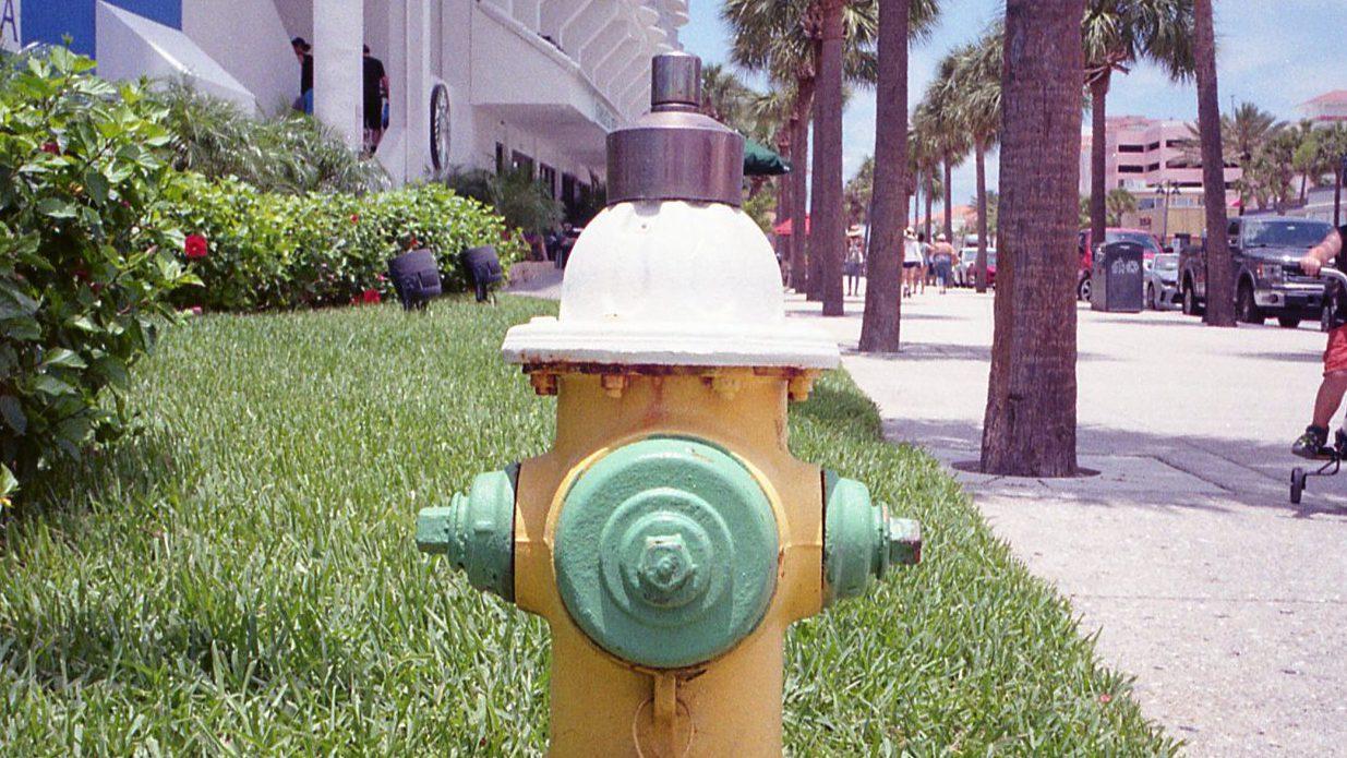 フロリダで見つけた可愛い消火栓たち